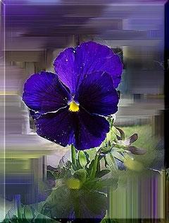 Blumen, blau, Christel Thoenes