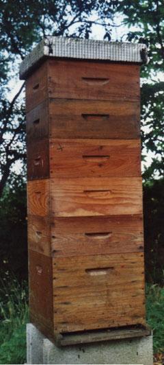Une bonne ruche