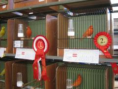 1. und 2. Sieger mit Rot schimmel 370 Pkt. und 367 Pkt. Züchter: Schrammel u. Sieberer
