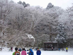 山頂付近の樹氷