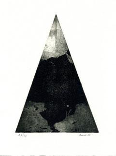 incisione originale di Adalbero Borioli (misura lastra 200x140 mm)