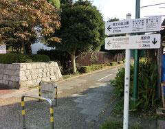 ●郷土の森博物館の横に着いたら、緑道を離れ左折します