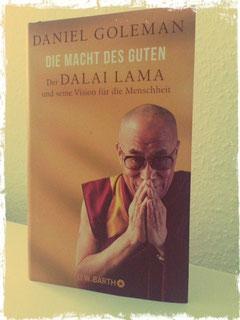 Wendepunkte Ursula Hütter Blog Buch Dalai Lama Daniel Goleman