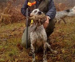 Une belle journée de chasse
