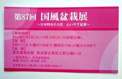 盆栽展 チケット
