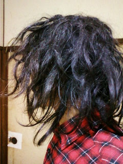 自宅で出来るドレッド自作法「フリーフォーム」実践中。12ヶ月経過。Japanese freeform dreadlocks 12month.