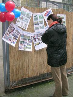 Hoffest: Eine Frau steht vor aufgehängten Plakate mit vielen Fotos an einem Zaun  betrachtet genau sie genau. Foto: Helga Karl