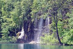 Die Plitzwitzer Seen sind ein Naturparadies