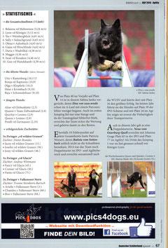 Statistik, 3 Hunde auf der BSP