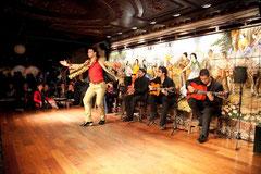 http://www.flamencovmadride.com/