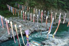 吉野川をのんびり遊覧船で。