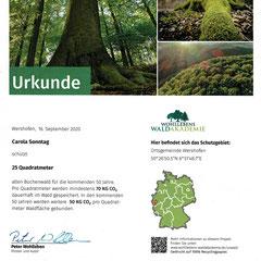 Urkunde für Wahllebens Waldakademie