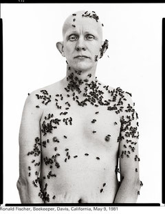 Richard Avedon, Californie 1981