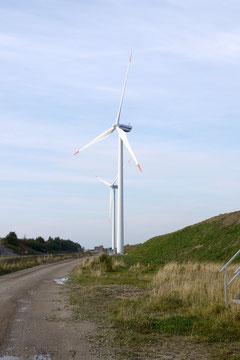 ロラン島にはのどかな農地に風車が続く