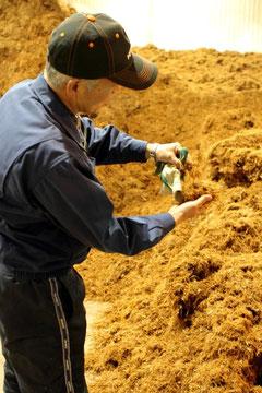 「真庭バイオマス集積基地」にはおがくずや樹皮が分別されて集積される