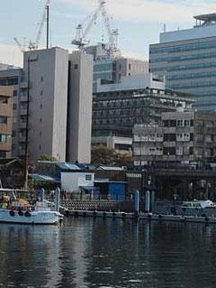横浜市・ゾウの鼻パークから見た横浜のビル街