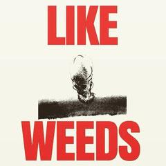 LIKE WEEDS