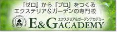 E&G ACADEMY