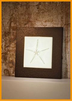 Wandleuchte Starfish