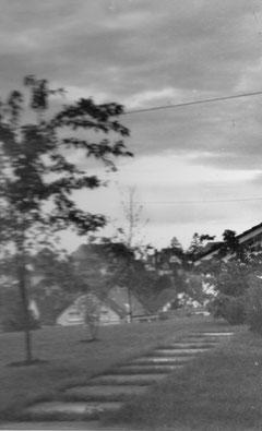 Blick aus dem Garten (von der Bank?) 1967