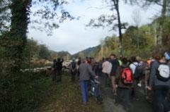 La transhumance retrouve le Chemin de Compostelle dans la traversée du Bois du Laring.