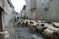 L'arrière-garde juste avant la Place Saint-Pierre