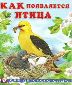 Дидактические материалы: Как появляется птица