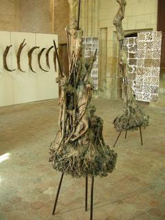 3 arbres de ma planète - Roman Gorski