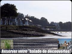 Balade nature de découverte en Baie de Somme©Découvrons la Baie de Somme