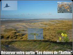 Découvrir la Baie de l'Authie©Découvrons la Baie de Somme