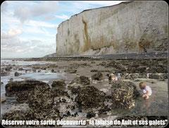 Sortie découverte des falaises de Ault©Découvrons la Baie de Somme