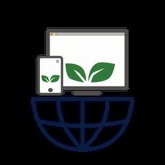 webbaum.ch-webdesign-webstart-schweiz+