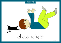 Kinderyoga Flashcards Escarabajo