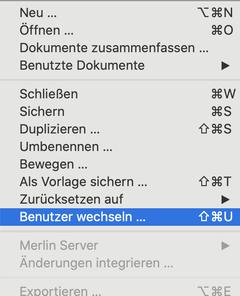 Benutzer wechseln in Merlin Project