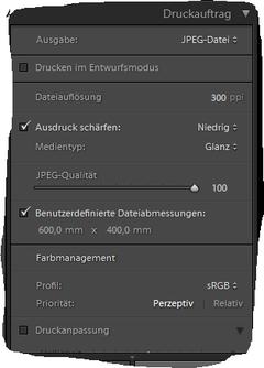 Als JPEG-Datei ausgeben