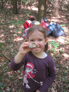 Auf Entdeckungsreise im Wald