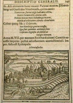 Schweinfurt 1595