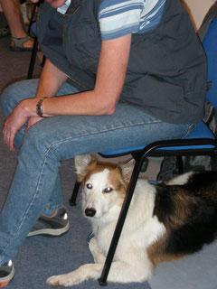 Liz unter ihrem Stuhl