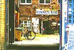 Bogladen Schwarze Risse i Mehringhof / Kreuzberg