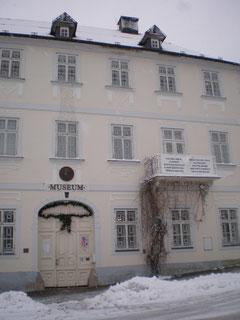 Museum Marienbad