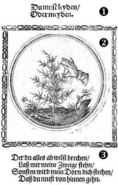 """Joachim Camerarius d. J.: """"Vierhundert Wahl-Sprüche und Sinnen-Bilder"""" (1671)"""