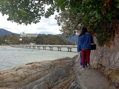 冬の三河湾の景色を堪能しつつ、遊歩道を散策