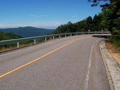 路面も比較的きれいな茶臼山高原道路