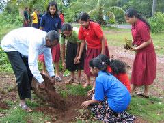 校長先生と一緒に木を植えました。