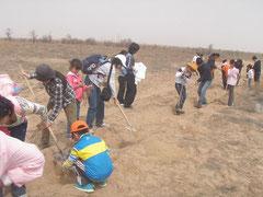 親子で植林作業