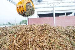 3市町の製糖工場が操業を終了した(写真は今年1月、石垣島製糖)