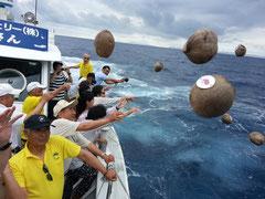 恋路ケ浜に届くことを願い、やしの実を海へ投流した参加者たち(12日午前、石垣市観光交流協会提供)