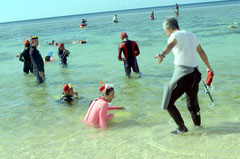 サンゴや生き物の観察を終え、満足そうに引き揚げる参加者=米原海岸