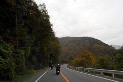紅葉で色づき始めた景色の中、気持ちよく走るツーリングパーティ