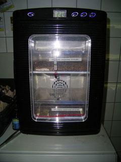 Der Inkubator